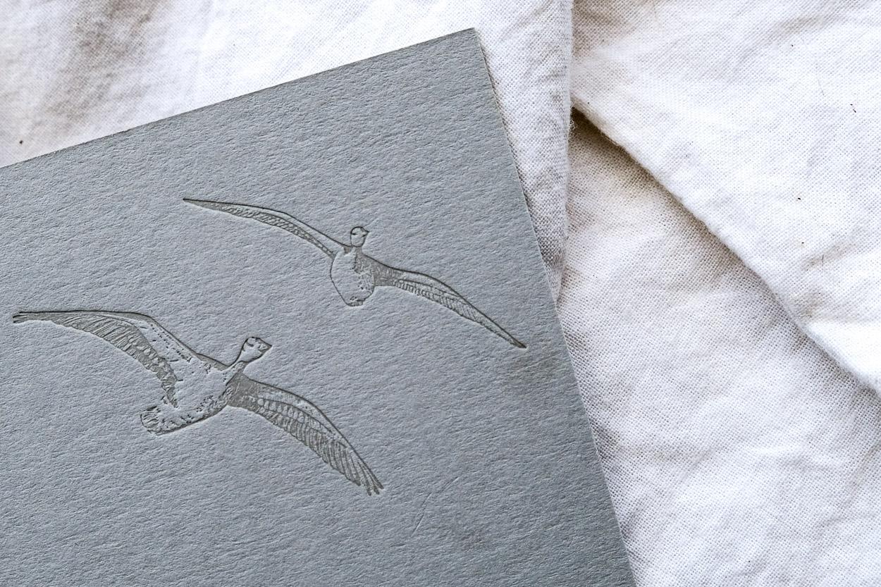 fliegende Wildgänse-Illustration