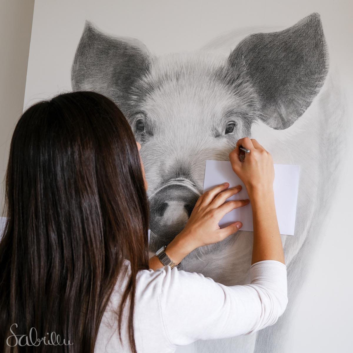 Zeichnung Entstehung, Graphit auf Papier, Schwein